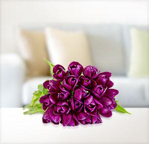 20 lila Tulpen
