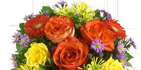 HIER KLICKEN: Blumenstrau� aussuchen und 5 EURO GUTSCHEIN einl�sen