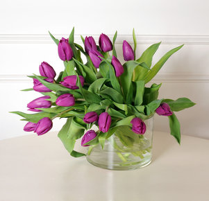 20 lilafarbene Tulpen