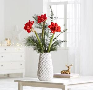 3 rote, gefüllte Amaryllis mit Seidenkiefer