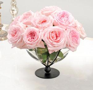 10 Duftrosen Pink O'Hara®