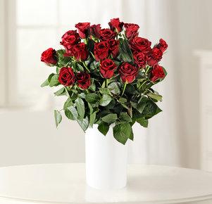 "20 Rote Rosen ""Red Calypso®"""