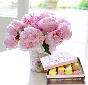 10 rosa Pfingstrosen mit feinen Macarons