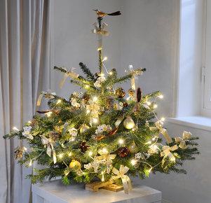 Weihnachtszauber mit Lichterkette