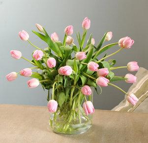 30 rosafarbene Tulpen