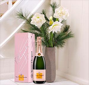 3 weiße, gefüllte Amaryllis mit Veuve Clicquot rosé