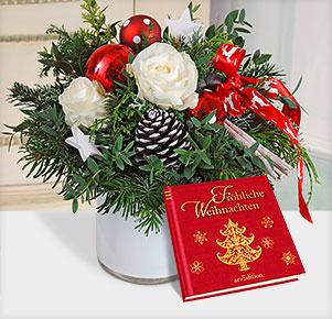 """Nordlicht mit Buch """"Fröhliche Weihnachten"""""""
