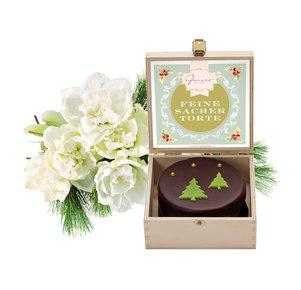 3 weiße, gefüllte Amaryllis mit weihnachtlicher Sachertorte (200g)