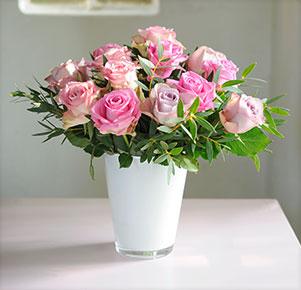 Rosenvielfalt
