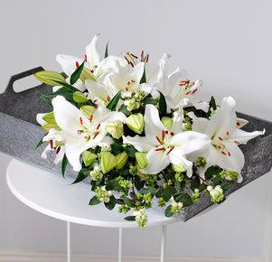 Schneebeeren-Lilien Mix