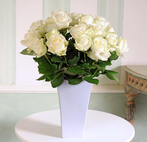 40 weiße Rosen