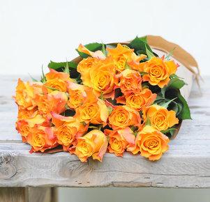 Orangefarbene Rosen