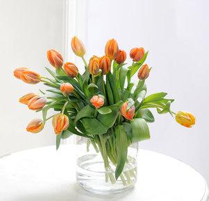 20 orangefarbene Tulpen