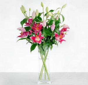 5 pinkfarbene Lilien