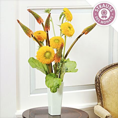 Sonnenblumen-Mix