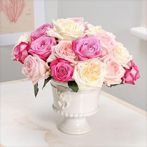 20 Duftrosen (Trendy Fragrance®, Pink O´Hara®, White O´Hara®)