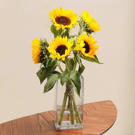 5 herrlich gelbe Sonnenblumen