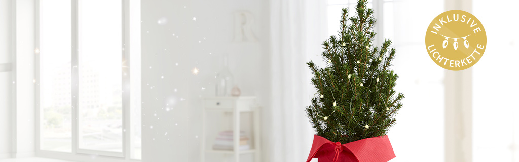 weihnachtsbaum online kaufen versenden. Black Bedroom Furniture Sets. Home Design Ideas