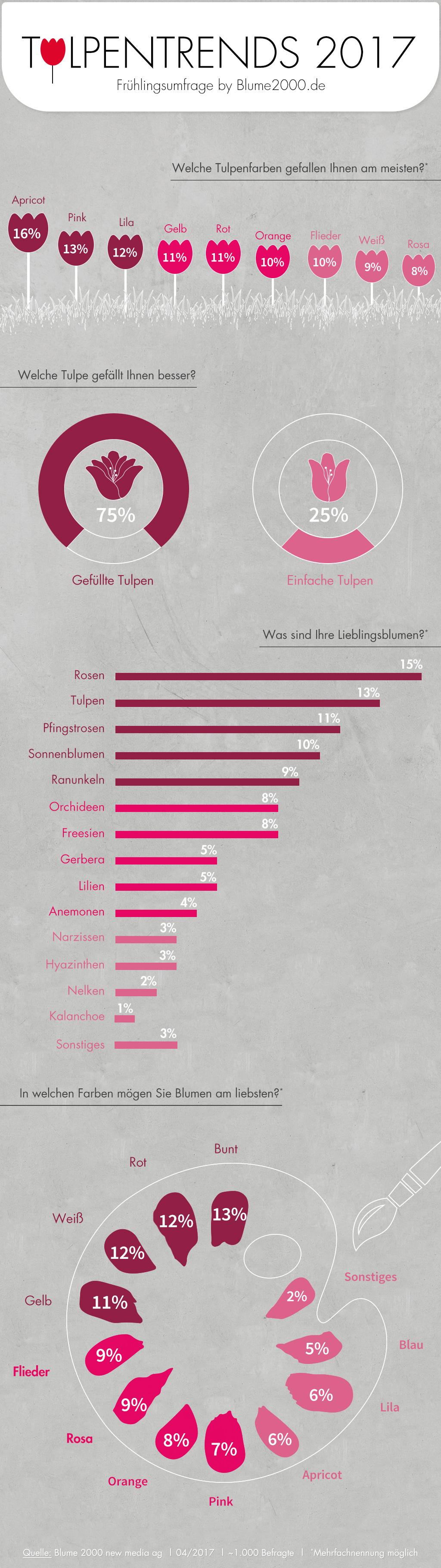Infografik: Das sind die beliebtesten Tulpensorten und -farben der Deutschen