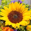 Blumenstrauß  Sonnengruß mit Lindt Mini Pralinés