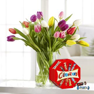 Bunte Tulpen mit Celebrations