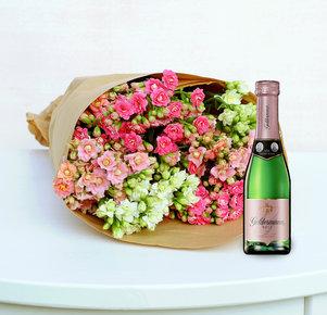 Kalanchoe pink, rosa, weiß mit Geldermann Rosé in Weiss, Rosa und Pink