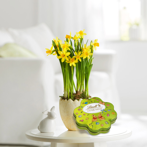 Narzissen im Keramik-Osterei mit Lindt Oster Kleeblatt