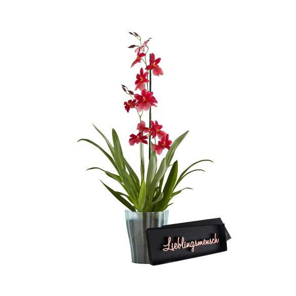 Orchidee Bon Moment mit Schriftzug Lieblingsmensch