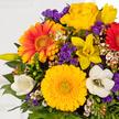 Blumenstrauß  Farbenglück Größe M mit Tartufini