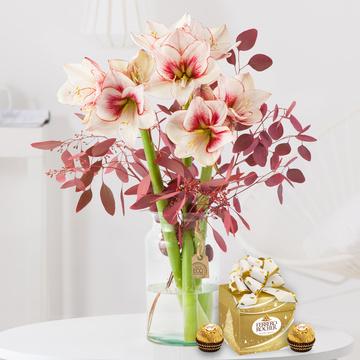Amaryllis Showmaster mit Ferrero Rocher Mini Geschenkbox
