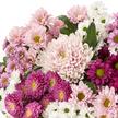 Lieblicher Chrysanthemenmix mit Nivea Lieblingssachen