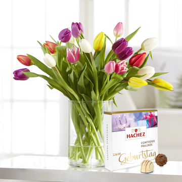 Bunte Tulpen 20 Stiele mit Hachez Zum Geburtstag