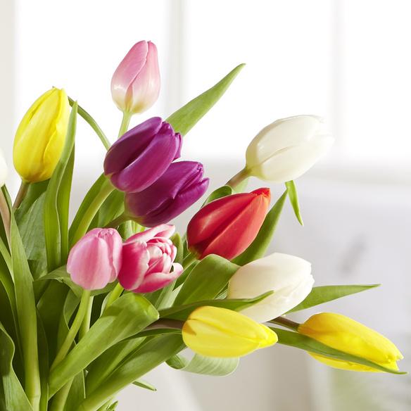 Bunte Tulpen 20 Stiele mit Niederegger Marzipan Klassiker