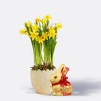 Narzissen im Keramik-Osterei mit Lindt Goldhase Blumen Edition