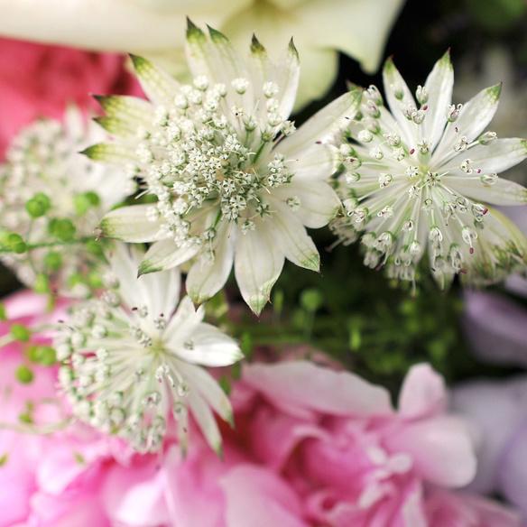 Blumenstrauß  Lichtblick mit Lindt Mini Pralinés