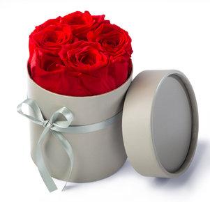 Beste Spielothek in Rosen finden