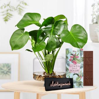 Monstera Water Plant mit Schriftzug Lieblingsmensch und Schokolade