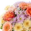 Blumenstrauß  Blütenpracht Größe M mit Tafelgut Tee Für Dich