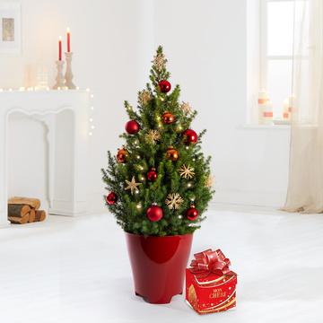 Weihnachtsbaum XXL Weihnachtsabend mit Ferrero Mon Chéri Geschenkbox