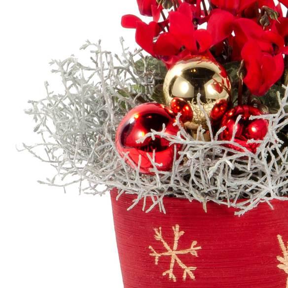 Winter Wonderland Cyclame mit Lindt Schöne Weihnachtszeit
