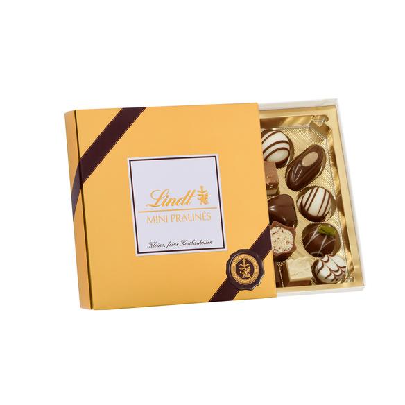 Amaryllis Showmaster 3 Stiele mit Lindt Mini Pralinés Gold-Edition