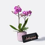 Orchidee in Pink mit Schriftzug Lieblingsmensch