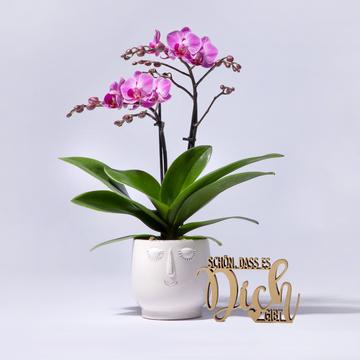 Orchidee in Pink mit Keramik-Übertopf mit Schriftzug Schön, dass es Dich gibt