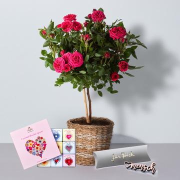 Rosenstämmchen in Pink mit Korb mit 9 Mini Schokoladentafeln und Herzmensch Schriftzug