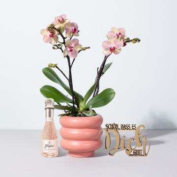 Orchidee in Orange mit Keramik- Übertopf mit Freixenet Piccolo Rosé und Schriftzug