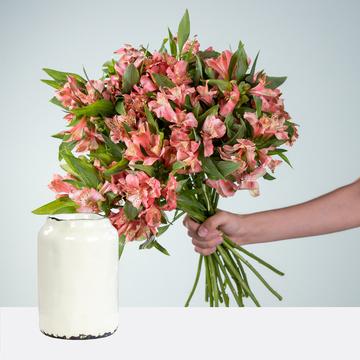 Alstromerien in Coral 20 Stiele mit Vase