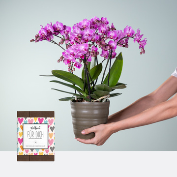 Blütenwolke mit Wildbach Vollmilchschokolade Für Dich