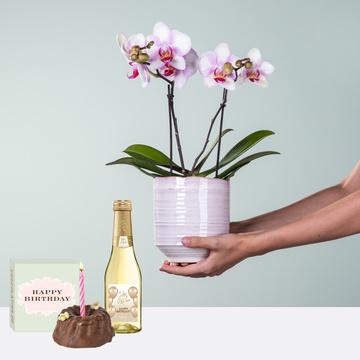 Bildschön mit Geburtstagsküchlein mit Kerze und Jules Mumm Happy Birthday