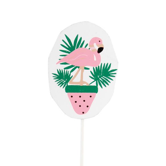 Tillandsien-Set Flamingo mit Stecker und Töpfen