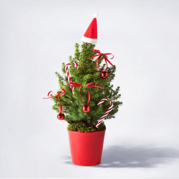 Weihnachtsbaum ca. 40 cm mit Dekoration mit Übertopf